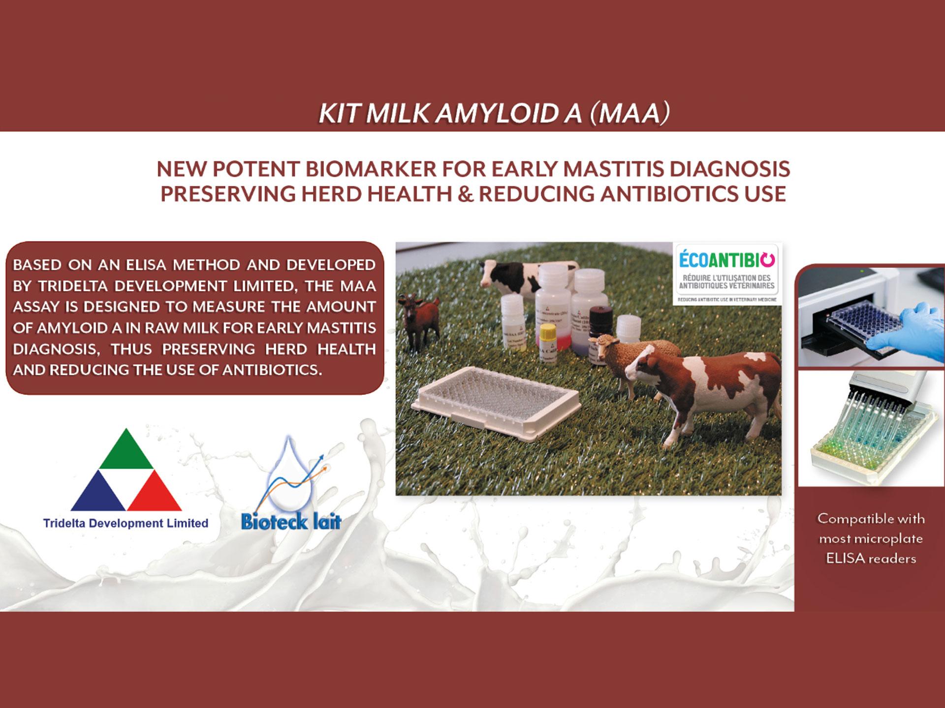 Milk Amyloid A - biomarker do wykrywania mastitis